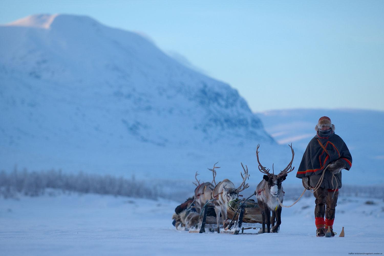Zweeds Lapland rondreis