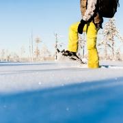 snowshoe tours lulea